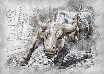bull-m.jpg