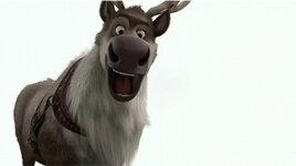 moose_pic.jpg